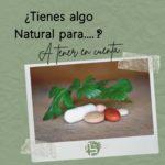 Tomar plantas medicinales ¿Qué debo tener en cuenta?